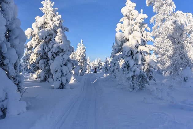 uitzicht-sneeuwscooter-lapland