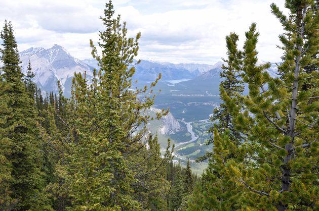 uitzicht-sulphur-mountain