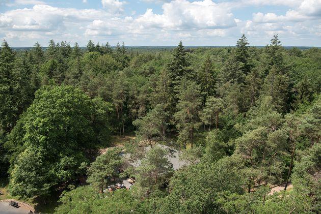 uitzicht-uitkijktoren-drenthe