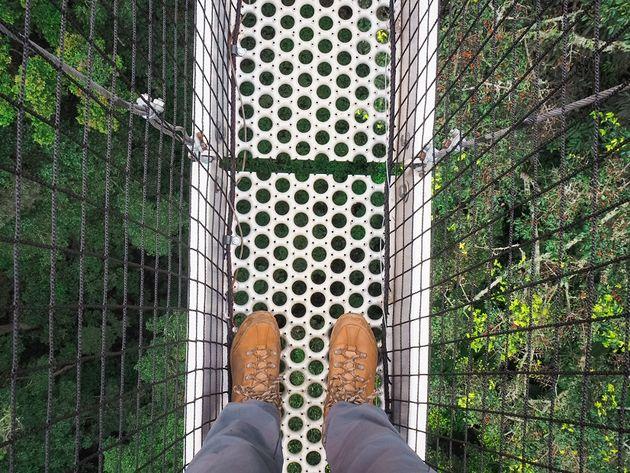 Uitzicht vanaf loopbrug Nyungwe naar beneden