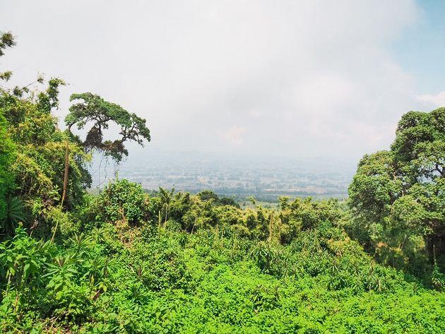 uitzicht vanaf volcanoes national park