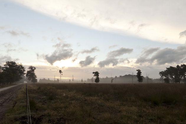veluwe-zonsopgang