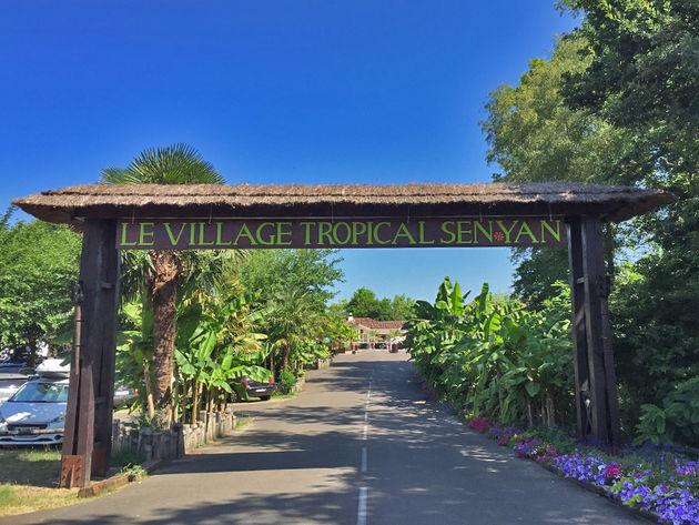 village-tropical-sen-yan