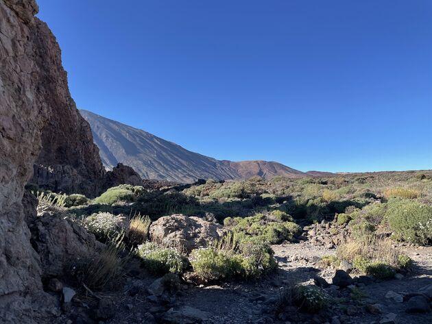 Wandelen El Teide vulkaan