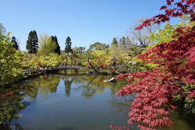 wandelen-japanse-tuinen
