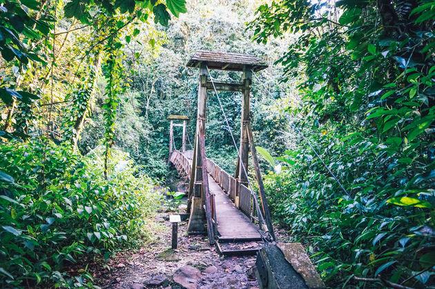 wandelen-nationaal-park-guadeloupe