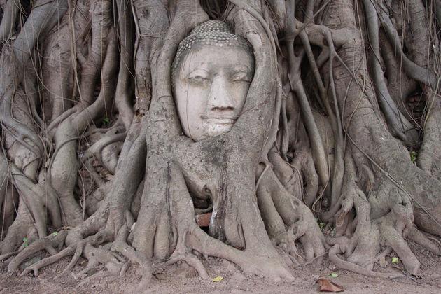 Wat_Phra_Mahathat_Ayutthaya