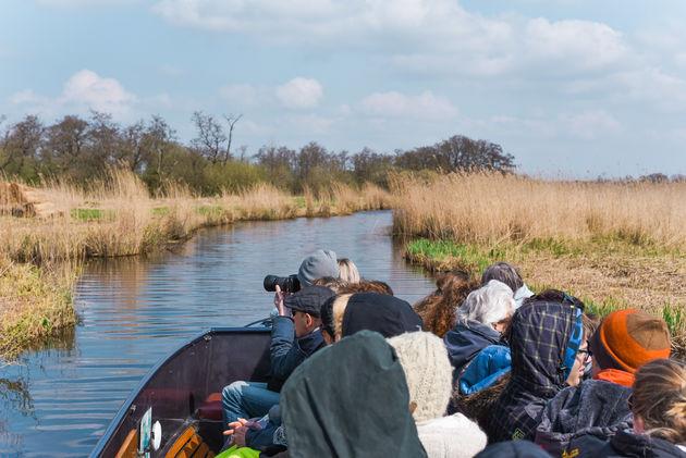 weerribben-wieden-fluisterboot