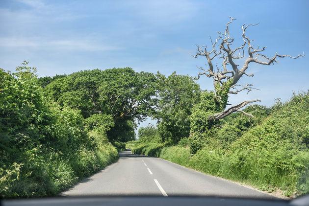 weg-engeland-rijden