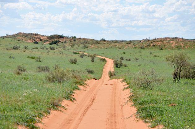 weg-rode-zandduinen