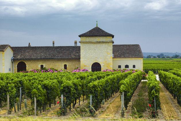 wijn-proeven-bordeaux