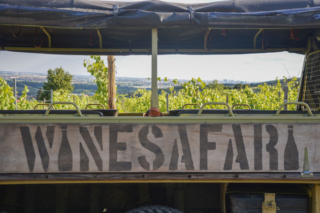 wijnsafari-bratislava