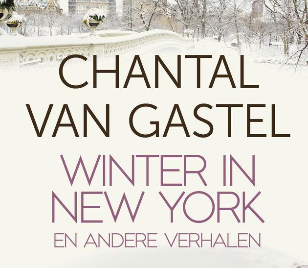 winter in NY en andere verhalen high res