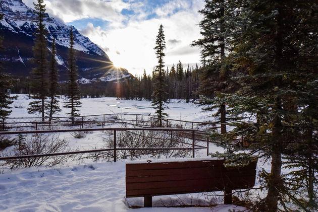winterwandeling-icefields-parkway
