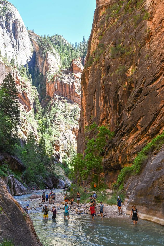 zion-narrows-hike
