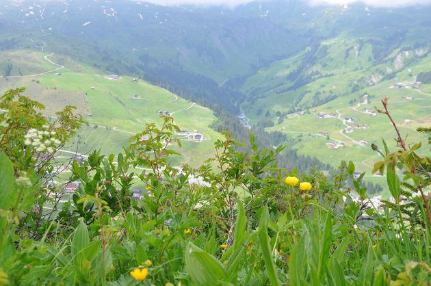 zomer-Großes-Walsertal