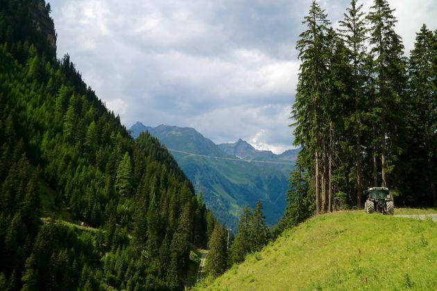 zomer-uitzicht-bergen