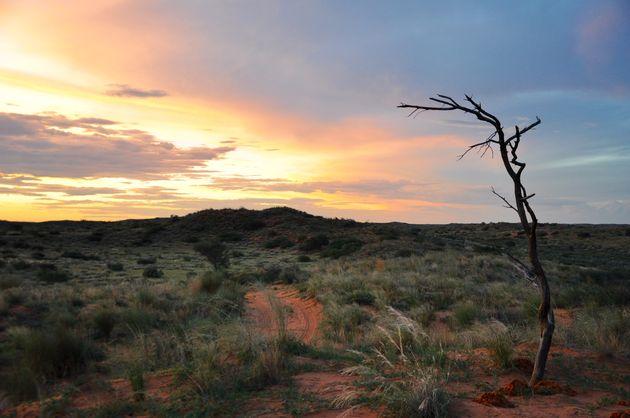 zonsondergang-kgalagadi