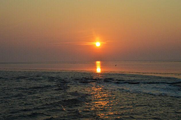 zonsondergang-wadden