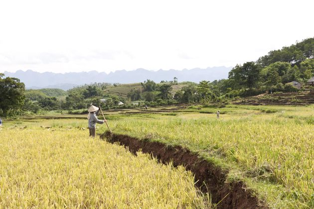 zuid-vietnam-binnenland