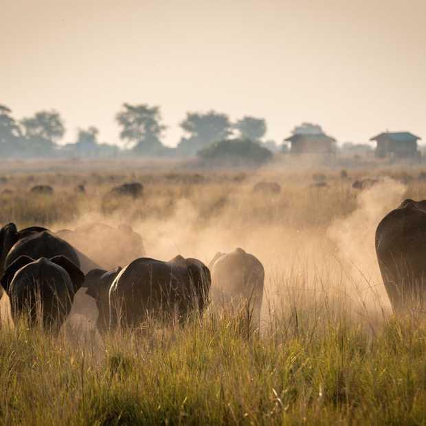 De 20 beste vakantiebestemmingen voor 2016 door National Geographic