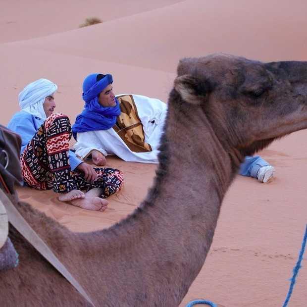4 keer: verrassend Marokko