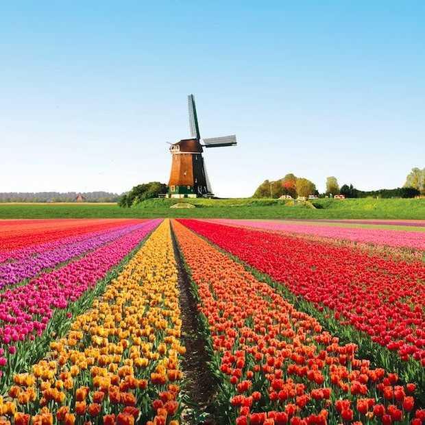 De top 5 leukste dorpen van Nederland