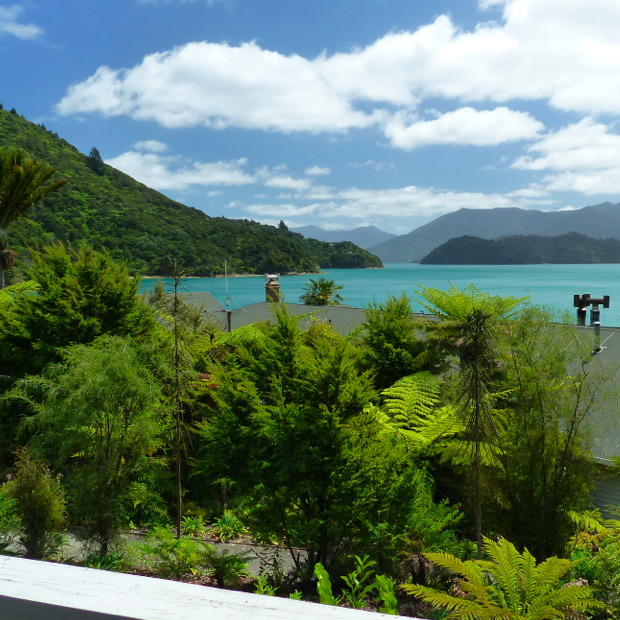 Nieuw-Zeeland ROCKS: Wellington & Marlborough Sounds