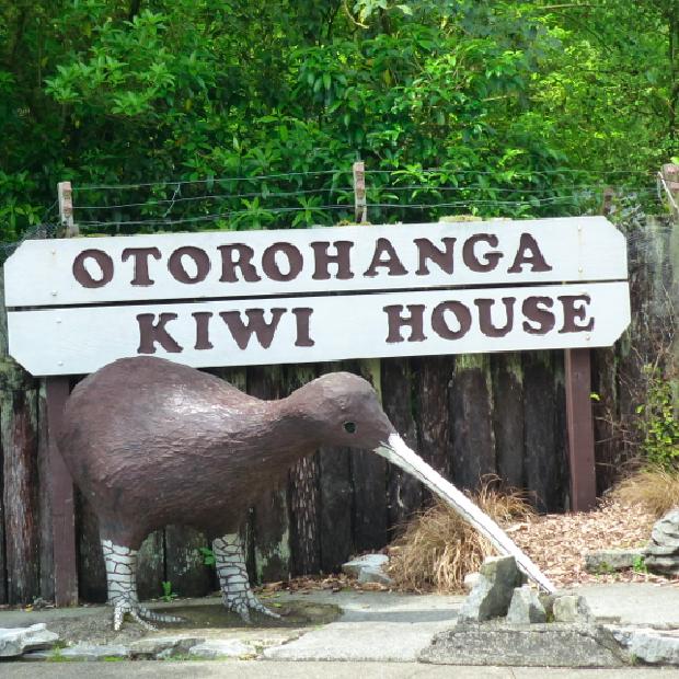 De kick off van onze reis door Nieuw-Zeeland: Auckland & Waitomo