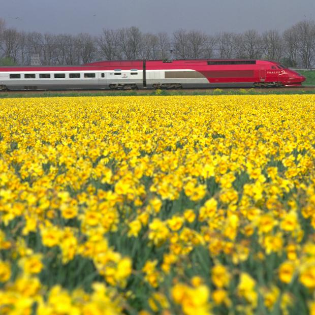 Nu ook met de Thalys naar Lille