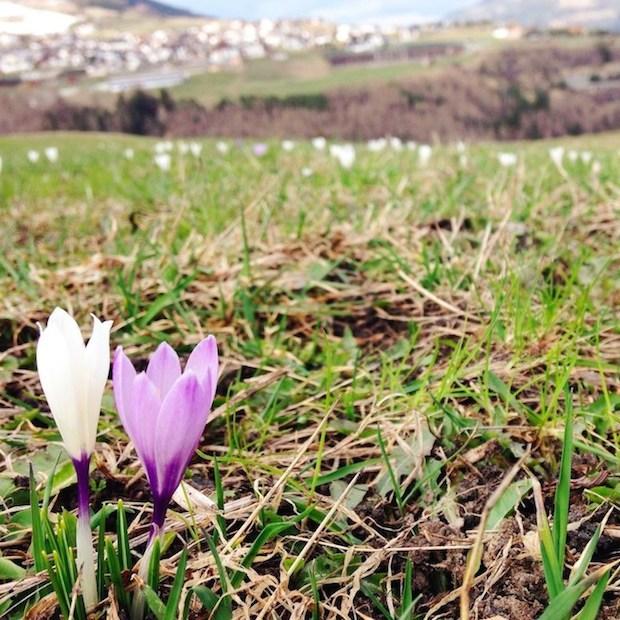 5 dingen die je weer kunt doen omdat het lente is