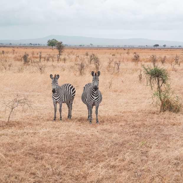 Deze vijf video's laten je de onontdekte kant van Afrika zien