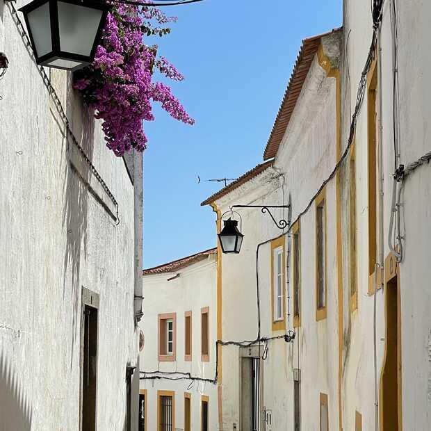 Verrassend Portugal: wijn, kastelen en heerlijk eten in regio Évora