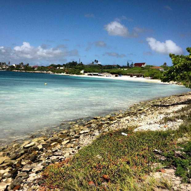 Aruba maakt zich op voor het grooste feest uit de geschiedenis: 60 jaar carnaval