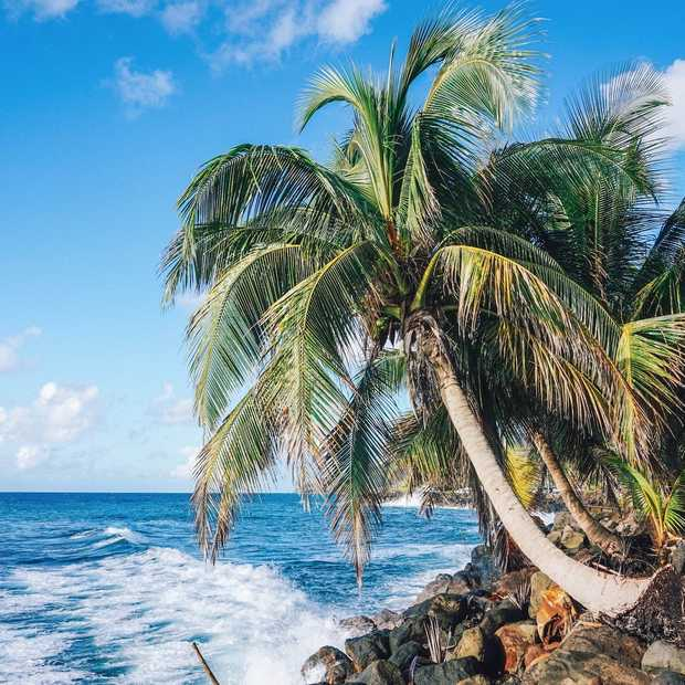 De leukste dingen om te doen op Basse-Terre en Grande-Terre