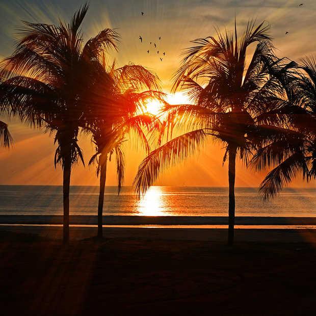 7 top aanbiedingen voor zonnige vakanties in 2020