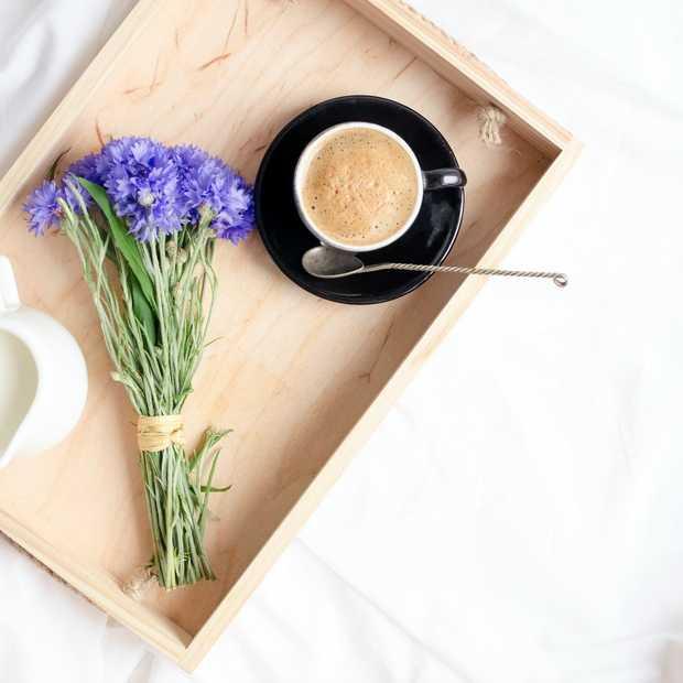 Dit zijn de drie beste bed & breakfasts van Nederland