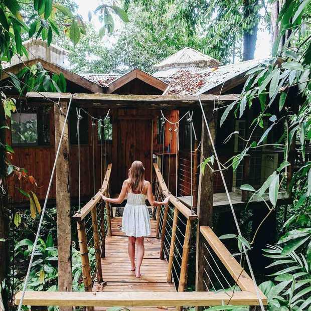 De 5 coolste boomhut hotels om alvast van te dromen