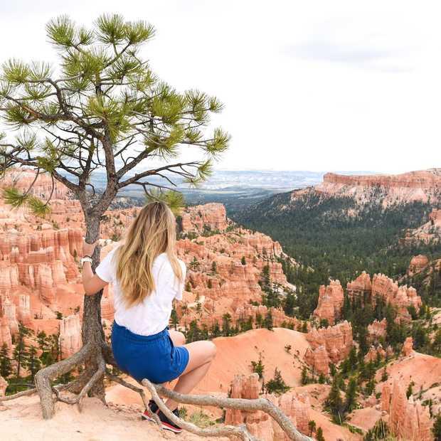 Bryce Canyon National Park: dé must see van Utah