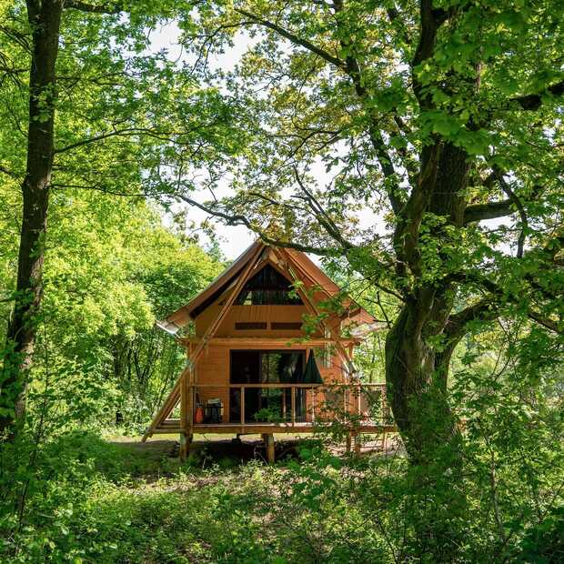 Kamperen aan de Vecht: op Camping de Roos kom je écht tot rust