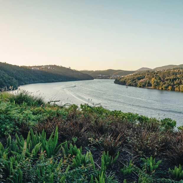 Dit wil je doen in de Douro-vallei: vijf unieke tips!