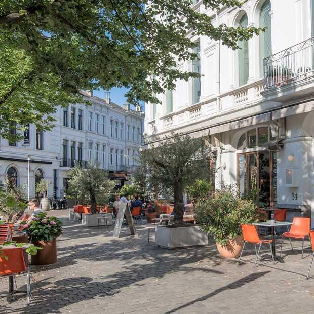Dit wil je doen in 't Zuid, de leukste wijk van Antwerpen