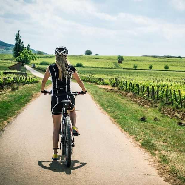Etrip2014 dag 3: van Beaune naar Givry