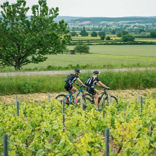 Dit zijn de 6 mooiste fietsroutes door Frankrijk