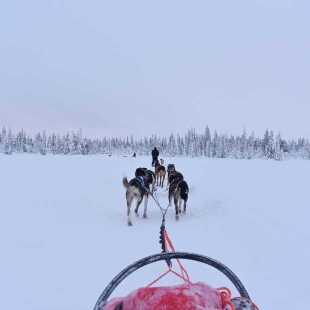 Fjällräven Polar: een legendarisch event ver boven de poolcirkel