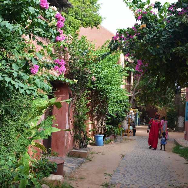 In Senegal kijk je je ogen uit: de mooiste plekjes in 24 foto's
