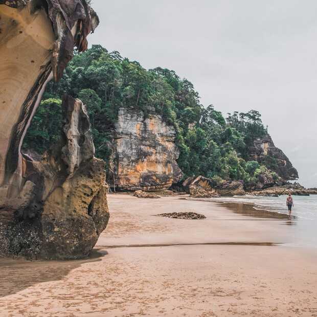 De 7 hoogtepunten van een rondreis door West-Maleisië en Borneo