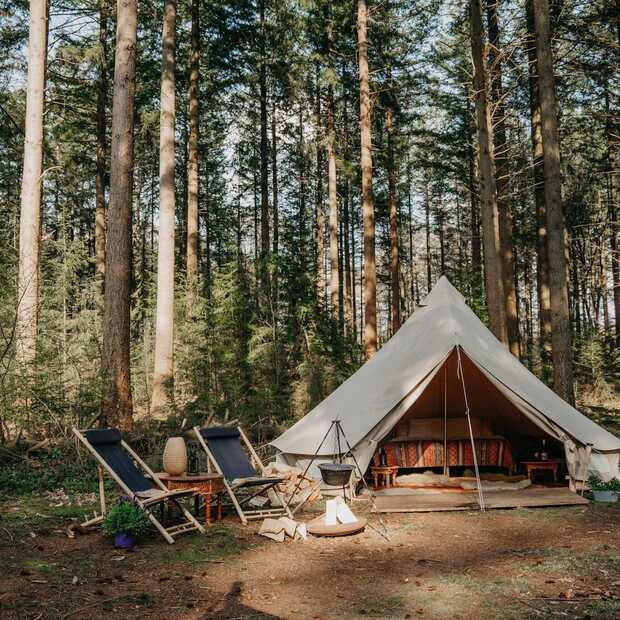 Nordic Woods: ga deze zomer kamperen in de Zweedse wildernis