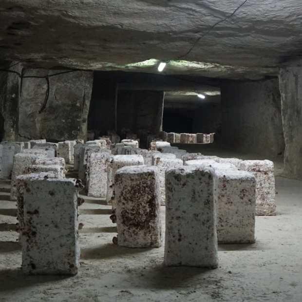 De verborgen wereld van La Cave des Roches in Bourré
