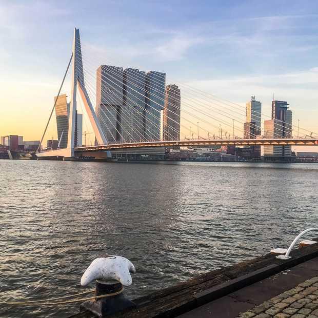 7 hotspots in het MaHo kwartier: het Rotterdamse SoHo!